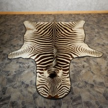African Zebra Rug Taxidermy Mount For Sale #19313 @ The Taxidermy Store