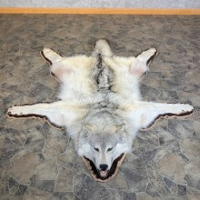 Alaskan Gray Wolf Rug Taxidermy Mount For Sale #23670 @ The Taxidermy Store