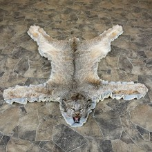 Alaskan Lynx Taxidermy Full Rug Mount For Sale