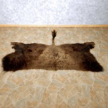 American Buffalo Bison Rug For Sale #14728 @ The Taxidermy Store