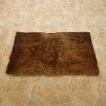 American Buffalo Bison Rug For Sale #14719 @ The Taxidermy Store