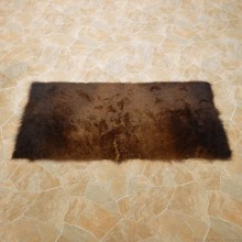 American Buffalo Bison Rug For Sale #14721 @ The Taxidermy Store