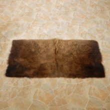 American Buffalo Bison Rug For Sale #14722 @ The Taxidermy Store