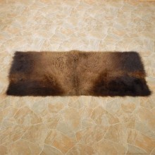 American Buffalo Bison Rug For Sale #14723 @ The Taxidermy Store