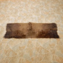American Buffalo Bison Rug For Sale #14724 @ The Taxidermy Store