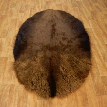 American Buffalo Bison Circle Taxidermy Rug For Sale #17444 @ The Taxidermy Store