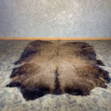 American Buffalo Bison Taxidermy Hide For Sale #23996 - The Taxidermy Store
