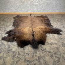 American Buffalo Bison Taxidermy Hide For Sale #24680 - The Taxidermy Store