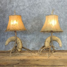 Bighorn Sheep Horn Lamp Set For Sale #21281 @ The Taxidermy Store
