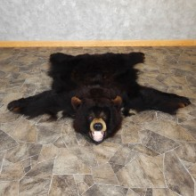 Black Bear Full-Size Rug For Sale #18970 @ The Taxidermy Store