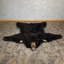 Black Bear Full-Size Rug For Sale #18975 @ The Taxidermy Store