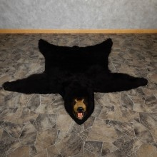 Black Bear Full-Size Rug For Sale #18979 @ The Taxidermy Store