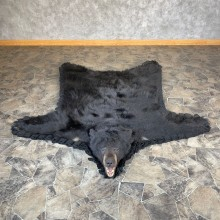 Black Bear Full-Size Taxidermy Rug For Sale