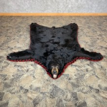 Black Bear Full-Size Rug For Sale #22533 @ The Taxidermy Store