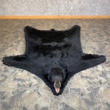 Black Bear Full-Size Rug For Sale #23667 @ The Taxidermy Store