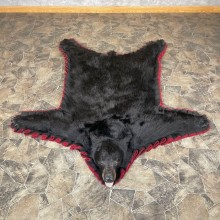 Black Bear Full-Size Rug For Sale #24175 @ The Taxidermy Store