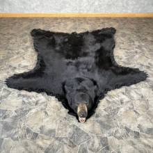 Black Bear Full-Size Rug For Sale #24315 @ The Taxidermy Store