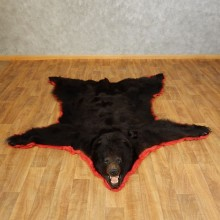 Black Bear Full-Size Rug For Sale #17257 @ The Taxidermy Store