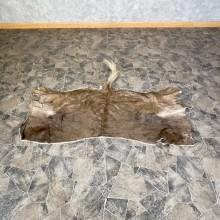 Black Wildebeest Back Hide For Sale
