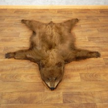 Black Bear Taxidermy Rug with Mounted Head 17856 For Sale @ The Taxidermy Store