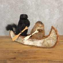 Canoeing Muskrat and Skunk Novelty Mount For Sale #20614 @ The Taxidermy Store