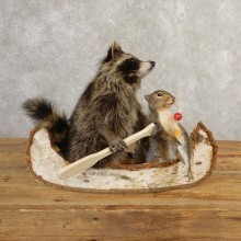 Canoeing Raccoon And Fishing Squirrel Novelty Mount For Sale #20749 @ The Taxidermy Store