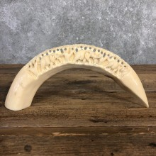 Carved Hippopotamus Tooth Safari Decor For Sale