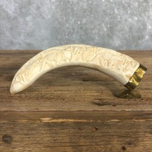 Carved Warthog Tooth Safari Decor For Sale