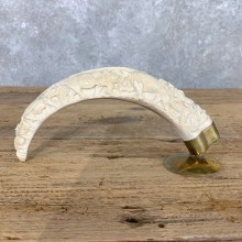Carved Warthog Tooth For Sale #22391 @ The Taxidermy Store