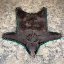 Chocolate Black Bear Full-Size Rug For Sale #24311 @ The Taxidermy Store