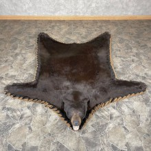 Chocolate Black Bear Full-Size Rug For Sale #24313 @ The Taxidermy Store