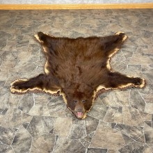Chocolate Black Bear Full-Size Rug For Sale #24686 @ The Taxidermy Store