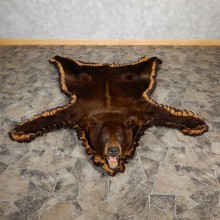 Cinnamon Phase Black Bear Full-Size Rug For Sale #18980 @ The Taxidermy Store