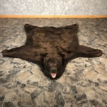 Cinnamon Phase Black Bear Full-Size Rug For Sale #20081 @ The Taxidermy Store