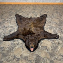 Cinnamon Phase Black Bear Full-Size Rug For Sale #22698 @ The Taxidermy Store
