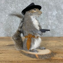Cowboy Squirrel Novelty Mount For Sale #23056 @ The Taxidermy Store