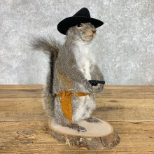 Cowboy Squirrel Novelty Mount For Sale #23458 @ The Taxidermy Store