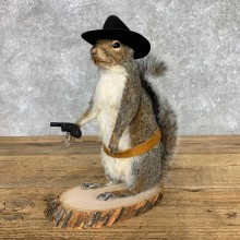Cowboy Squirrel Novelty Mount For Sale #23459 @ The Taxidermy Store