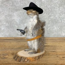 Cowboy Squirrel Novelty Mount For Sale #23460 @ The Taxidermy Store