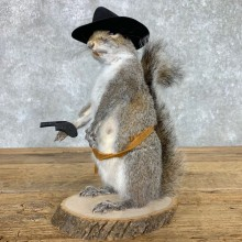 Cowboy Squirrel Novelty Mount For Sale #23462 @ The Taxidermy Store