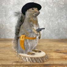 Cowboy Squirrel Novelty Taxidermy Mount For Sale