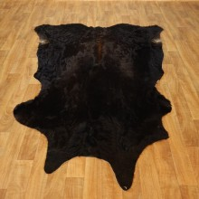 Black Cowhide Taxidermy Tanned Skin For Sale #17443 @ The Taxidermy Store