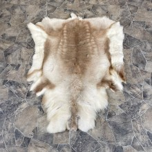 Decorative Caribou Hide For Sale
