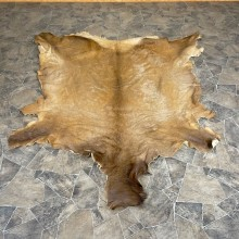 Decorative Elk Hide For Sale