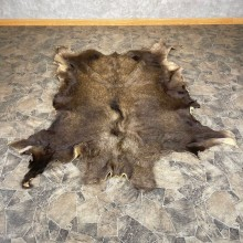 Decorative Moose Hide For Sale