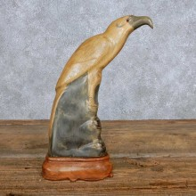Asian Water Buffalo Horn Eagle Carving For Sale #14008 @ The Taxidermy Store