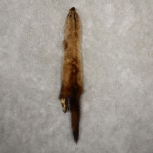 Fisher Tanned Hide For Sale #20682 @ The Taxidermy Store