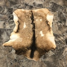 Goat Hide Taxidermy Tanned Skin For Sale #20093 @ The Taxidermy Store