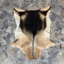 Goat Hide Taxidermy Tanned Skin For Sale #21859 @ The Taxidermy Store