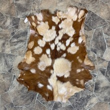 Goat Hide Taxidermy Tanned Skin For Sale #22752 @ The Taxidermy Store